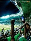Palmeiras 2016 - A trajetória de um campeão - Page 3