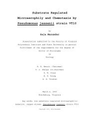 Substrate Regulated Microaerophily and Chemotaxis ... - Virginia Tech