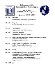 In-Situ Bioremediation Session July 2002 - State of New Jersey