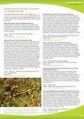 amphibian ark - Page 3