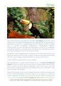 Begleitete Senioren-Reisen Teneriffa - Seite 5
