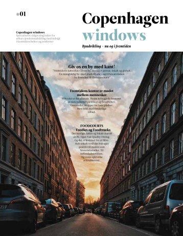 COPENHAGEN WINDOWS