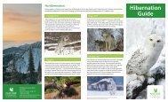 Hibernation Guide