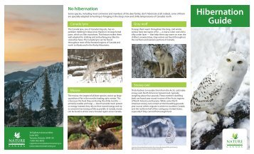 Hibernation Guide