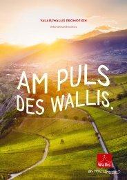 Am Puls des Wallis
