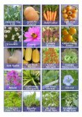 Seed Catalogue - Page 2