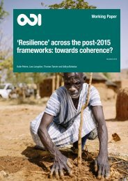 'Resilience' across the post-2015 frameworks towards coherence?