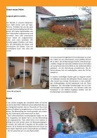 newsletter herbst 2016 - Page 2