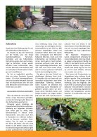 newsletter herbst 2016 - Page 3
