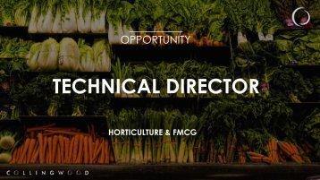 TECHNICAL DIRECTOR