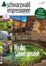 Flip_Magazin 2016
