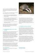 Soortenbescherming bij ruimtelijke ingrepen - Page 7