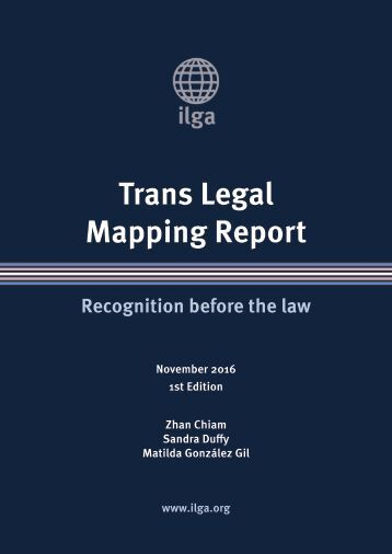 Mapping Report