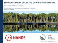 The Government of Ontario and the environment