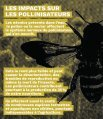 Alliance pour l'Interdiction des Pesticides Systémiques - Page 6