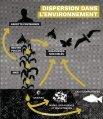 Alliance pour l'Interdiction des Pesticides Systémiques - Page 7