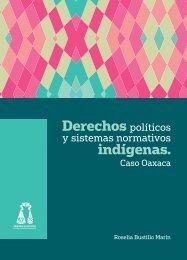 Derechos indígenas
