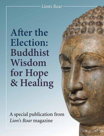 Buddhist Wisdom for Hope & Healing