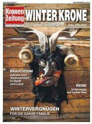 Winter Krone 2016-12-01