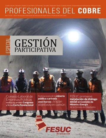 Revista Profesionales del Cobre nº29