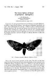 The Green Sphinx of, Kauai ( Lepidoptera ... - ScholarSpace