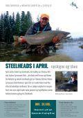 Steelheads i April - Page 2