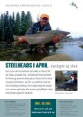 Steelheads i April - Page 2