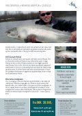 Steelheads i April - Page 4