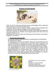 Umgang mit Heterogenität - Studienseminare Rheinland-Pfalz