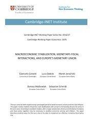 Cambridge-INET Institute