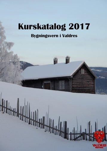 Kurskatalog 2017