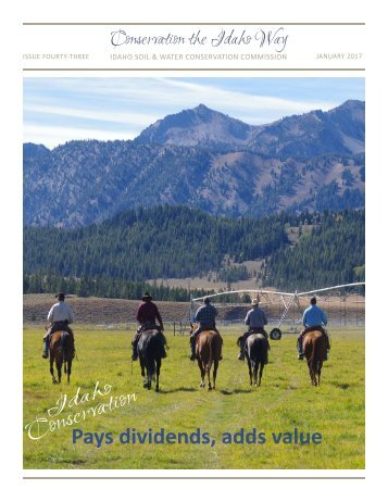 Pays dividends adds value