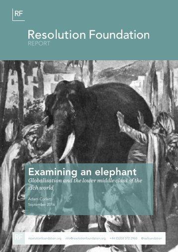 Examining an elephant