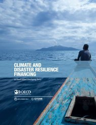 CLIMATE AND DISASTER RESILIENCE FINANCING