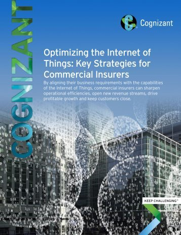 Optimizing the Internet of Things Key Strategies for Commercial Insurers