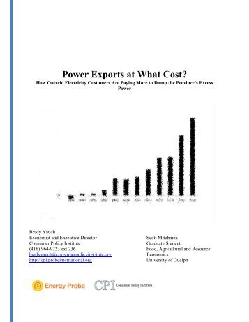 Power Exports at What Cost?