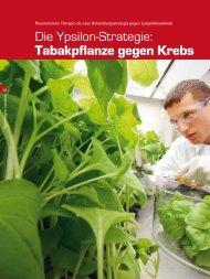 Die Ypsilon-Strategie: Tabakpflanze gegen Krebs - Sackstark!