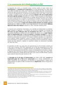 AMBIENTAL - Page 6