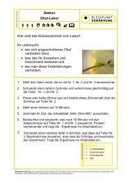 Arbeitsblatt Obst-Labor - Baden-Württemberg