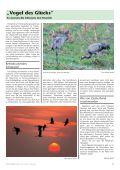 Heimat-Rundblick 118 - Herbst 2016 - Page 7
