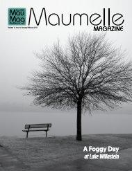 A Foggy Day at Lake Willastein