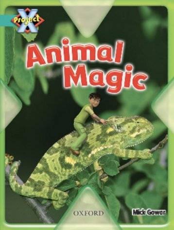 Level-07-Animal-Magic-SAMPLE