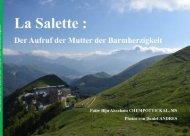La Salette - Der aufruf der mutter der Barmherzigkeit - P. Biju Abraham Chempottical , ms