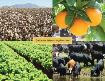 Guide to Arizona Agriculture