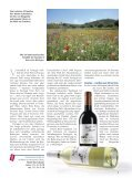 Weinmagazin und Preisliste - Weinkeller Riegger AG - Seite 5