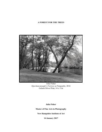 FISHER 2016 MFA Photography Thesis_A FOREST FOR THE TREES
