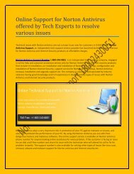 Online Support for Norton Antivirus offered by Tech Experts to resolve various issues