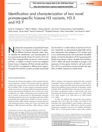Identification and characterization of two novel primate-specific ...