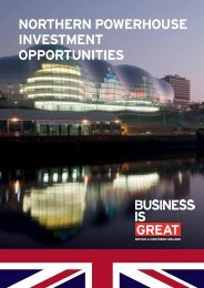 NORTHERN POWERHOUSE INVESTMENT OPPORTUNITIES