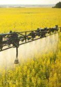 Risques environnementaux des pesticides néonicotinoïdes - Page 2